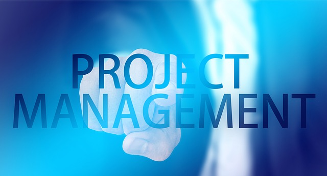 Project Management Office PMO Consultants