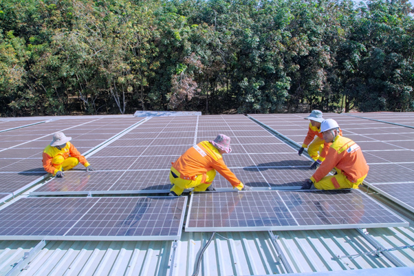 How To Ensure Success in Renewable Energy Projects with Project Management